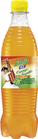 Libella ACE Orange-Karotte - PET 0,5 Liter